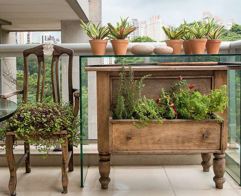 https://www.google.com.br/search?q=cantinho das plantas