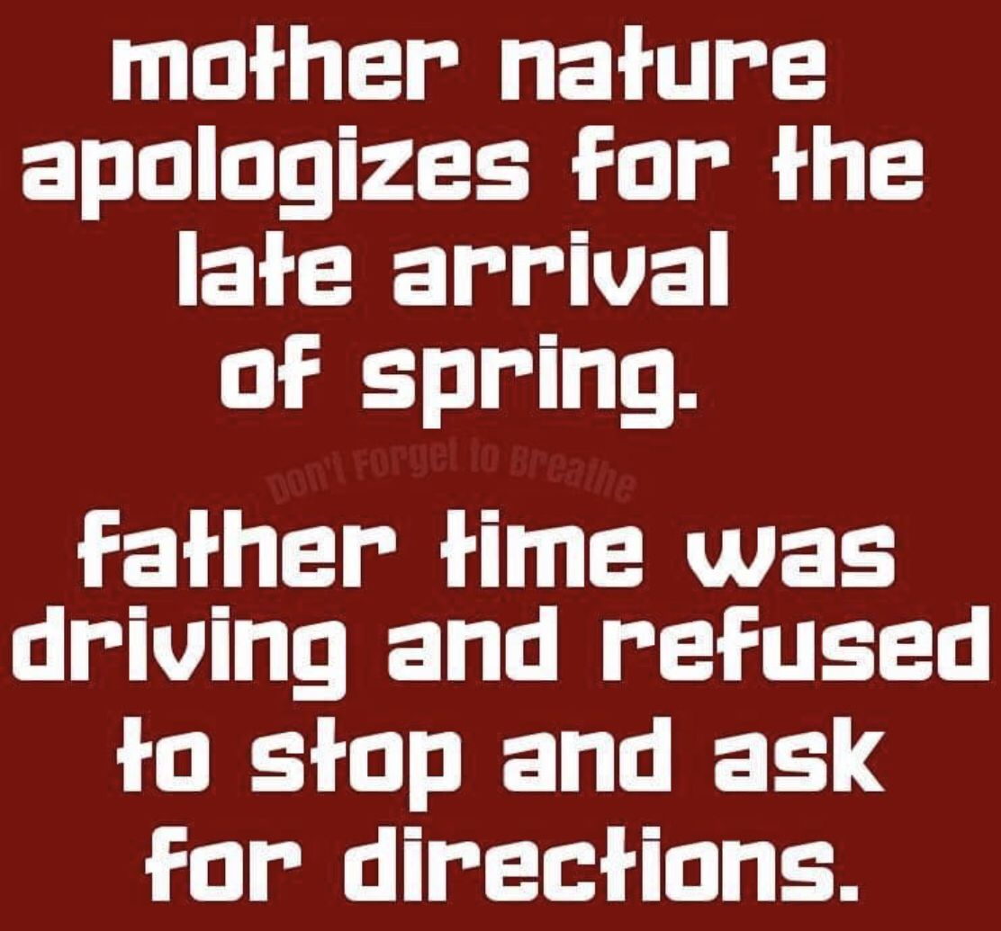 Pin By Tina Aronne On Funny Stuff Mother Nature Quotes Funny Mom Quotes Funny Words