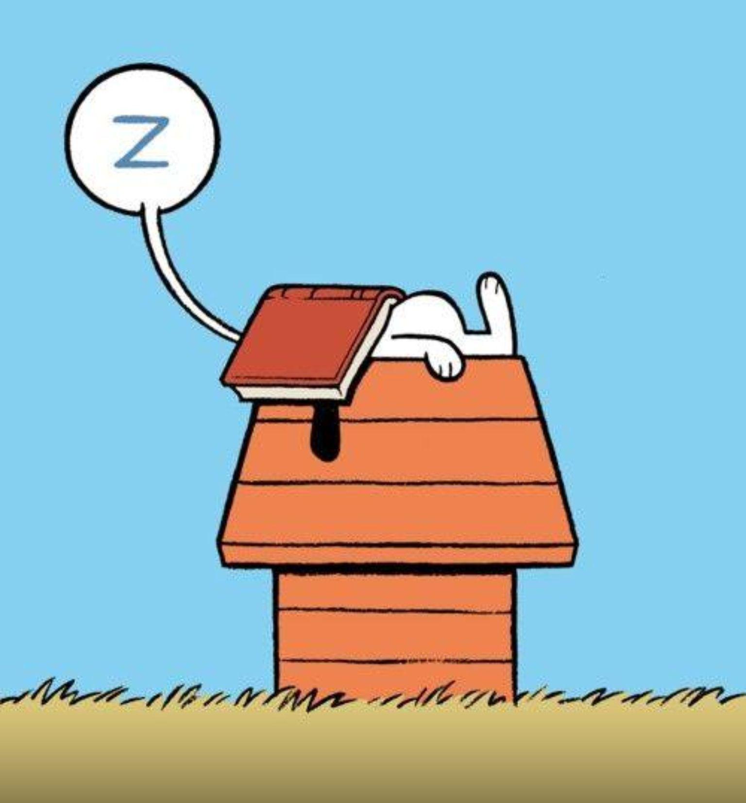 Que delícia ler até dormir... :)