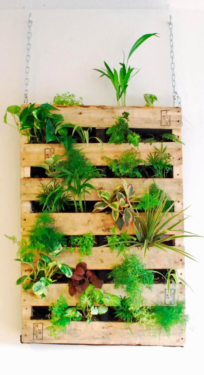 Vertical gardens, also called living walls, are all over us for a ...