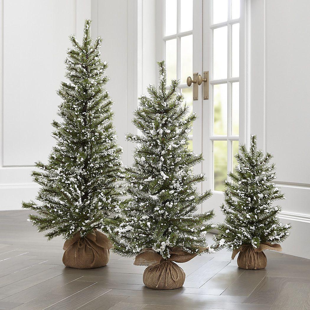 Small christmas trees, Christmas
