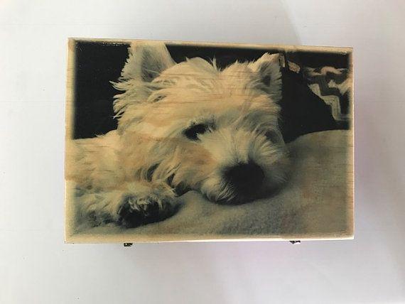 Pet Urn Dog Urn Cat Urn Urn Pet Pets Pet Cremation Urn Pet Urns