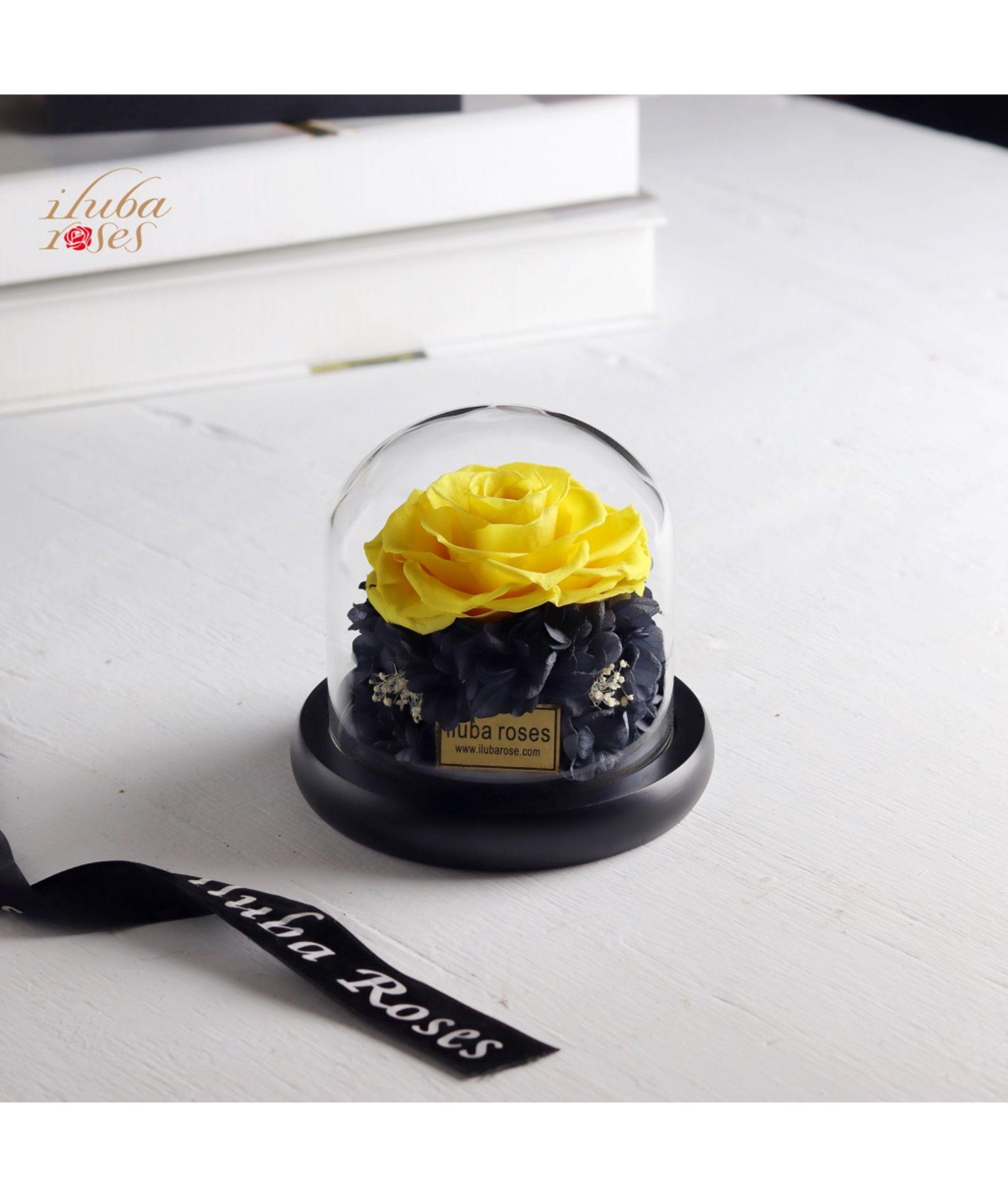 وردة ايلوبا روزز دائمة داخل فازة زجاجية Glassware Rose Tableware