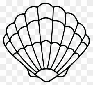 1901 Free Clipart Of A Scallop Sea Shell Clip Art Sea Shell Clip Art Png Download Free Clip Art Clip Art Shells