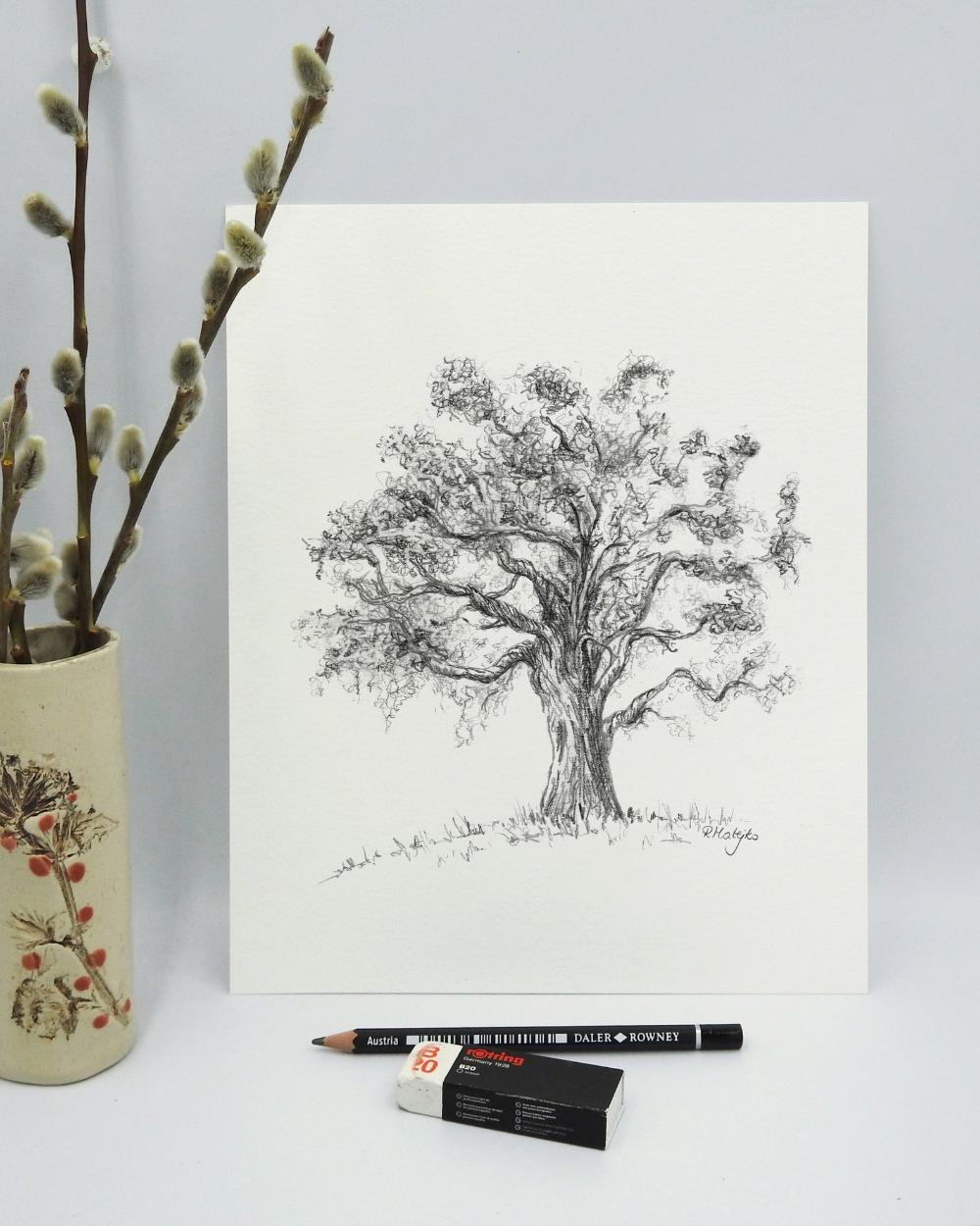 Original Oak Tree Pencil Drawing Tree Wall Art Oak Tree Etsy Tree Drawing Tree Wall Art Nature Drawing