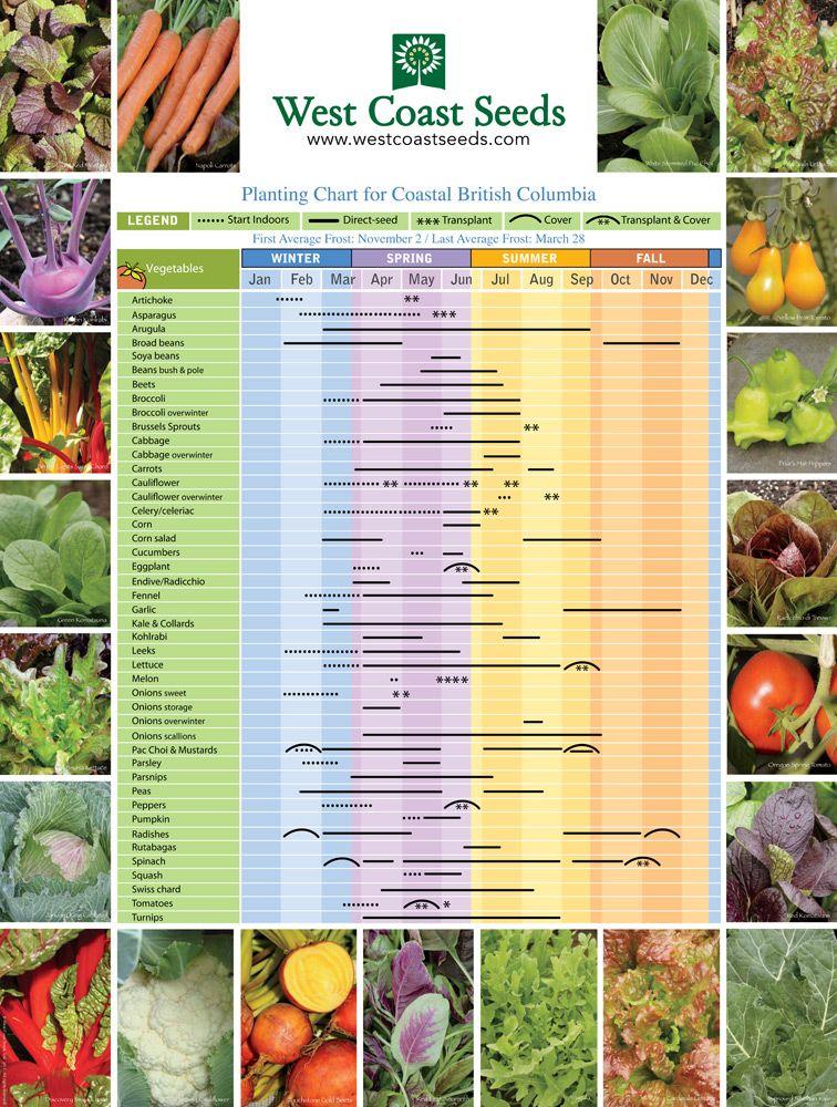 Seasonal Observations Garden Planting Chart Fall Garden Vegetables Gardening Books Seed Planting Chart