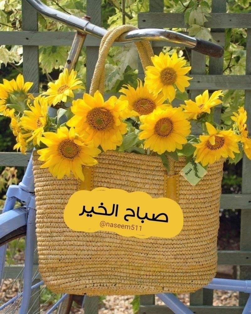يخبرني الصباح أن شعور الصباح عن ألف شعور وكرم الصباح أبلغ سخاء Good Morning Flowers Good Morning Roses Beautiful Morning Messages