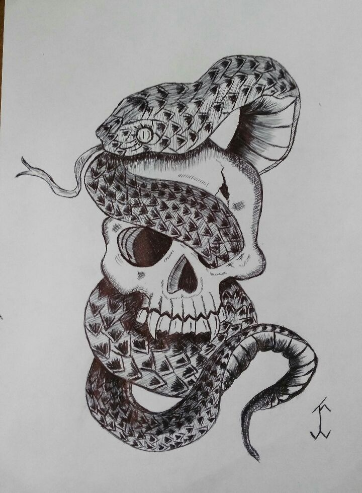 skullsnake01 skull drawing draw pen art snake head