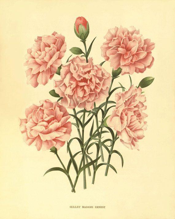 Outstanding Wall Flower Art Composition - All About Wallart ...
