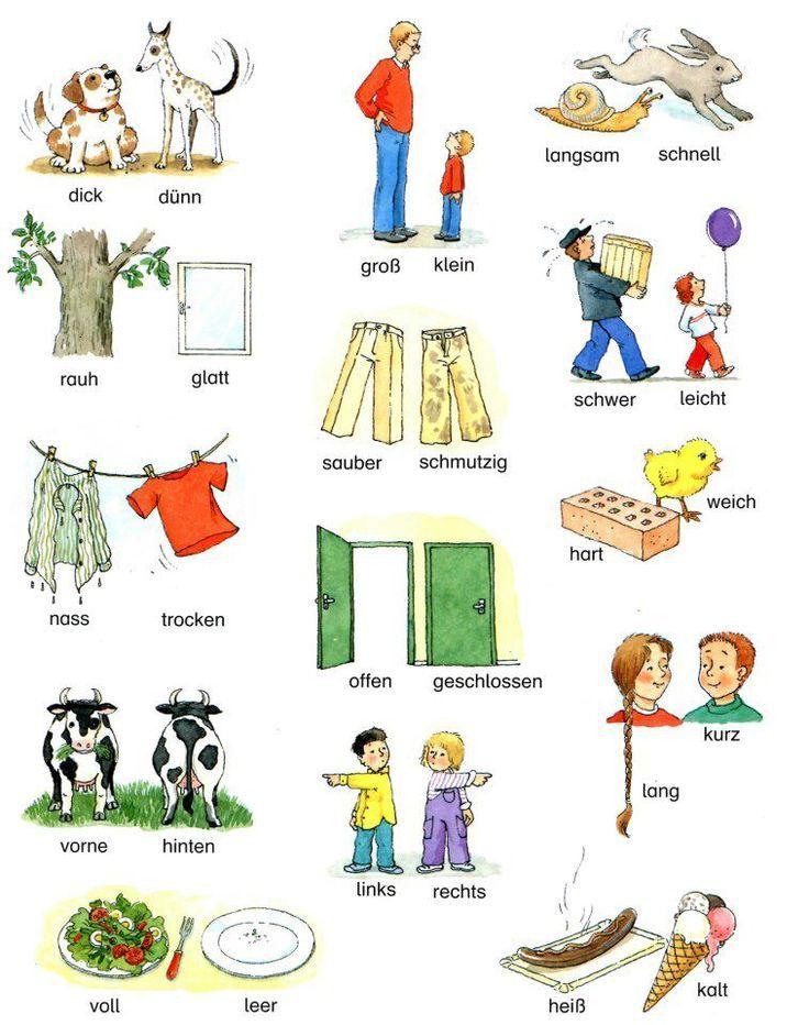 Gegenteile... Opposites in Deutsch: | German Language | Pinterest ...