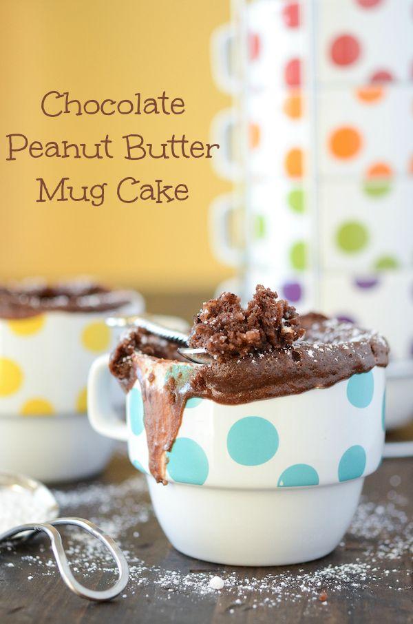 Chocolate Peanut Butter Mug Cake from thenovicechefblog.com