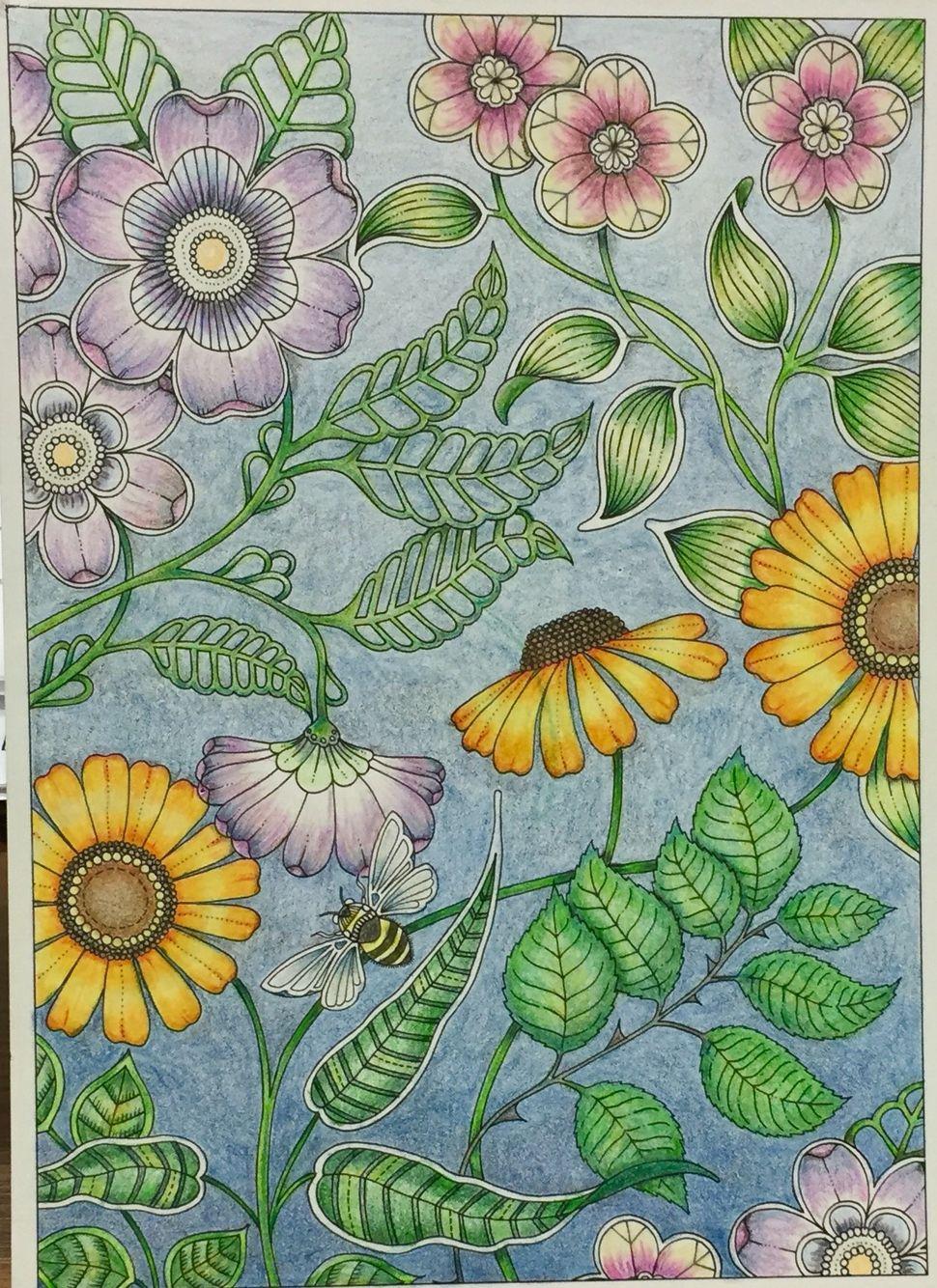 From Joanna Basford S Secret Garden Postcard Book Just Finished Secret Garden Coloring Book Secret Garden Colouring Secret Garden Coloring Book Finished