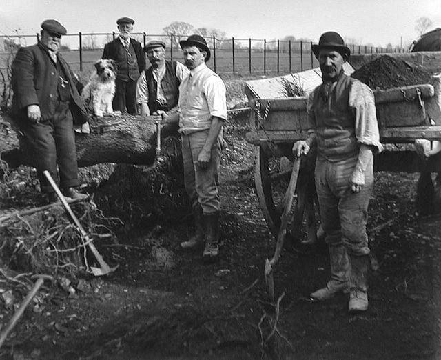 Farm workers, 19th century