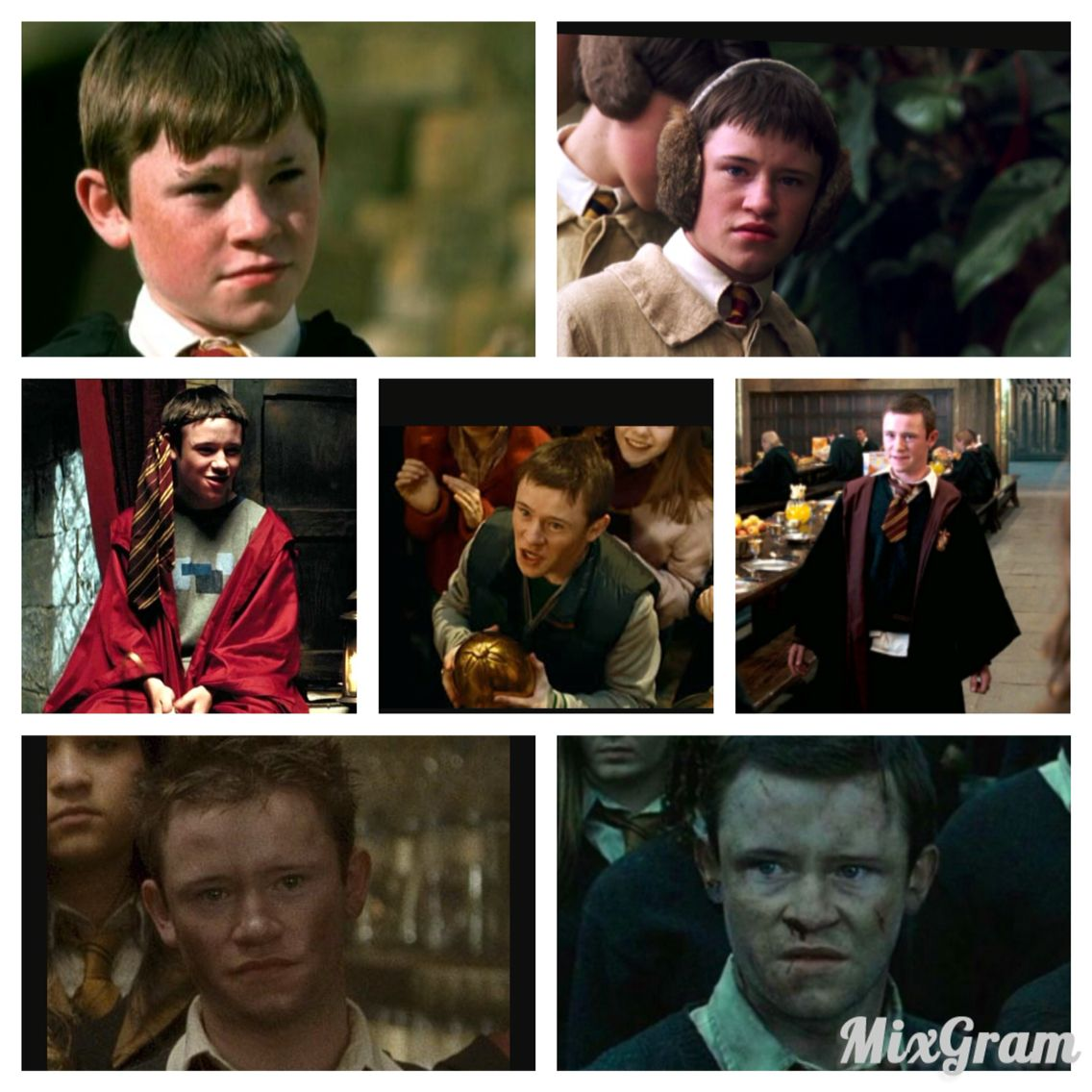Seamus Finnigan Year By Year Year Six Movie Posters Harry Potter