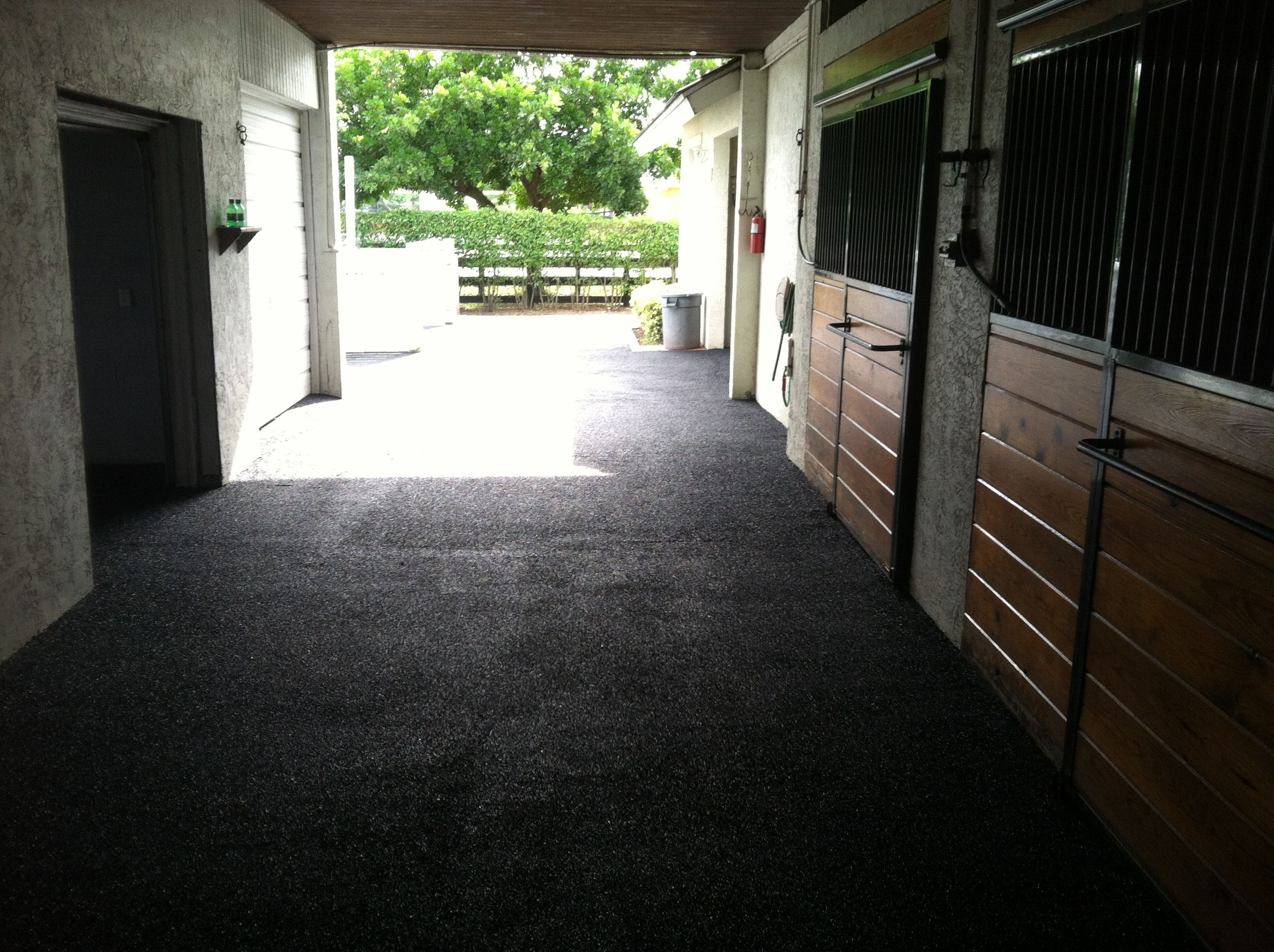 Equine Rubber Surface Aisle Way In Wellington Fl Www Splashscapes Net Swimming Pool Installation Pool Installation Swimming Pools Inground