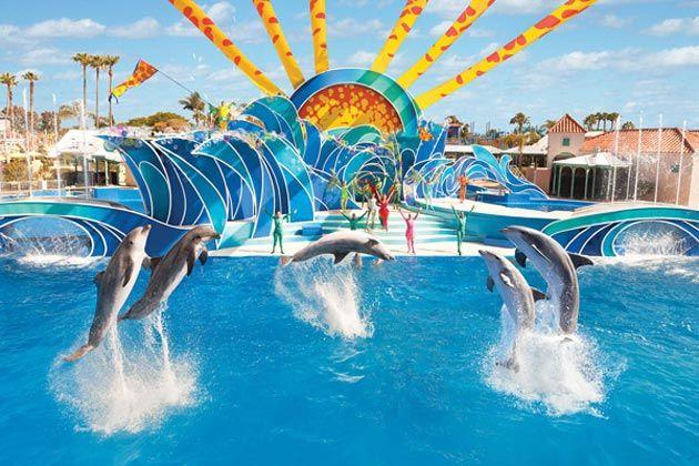Orlando Discount Tickets Disney Discount Tickets Universal Seaworld San Diego Tourist Attractions Seaworld San Diego Florida Vacation Packages