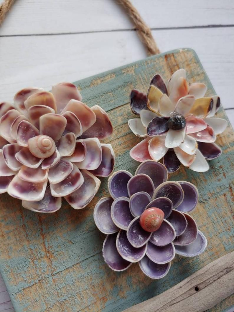 Seashell Flowers Birthday Gifts For Mom Anniversary Gift Etsy In 2020 Shell Crafts Diy Seashell Wall Decor Seashell Gift