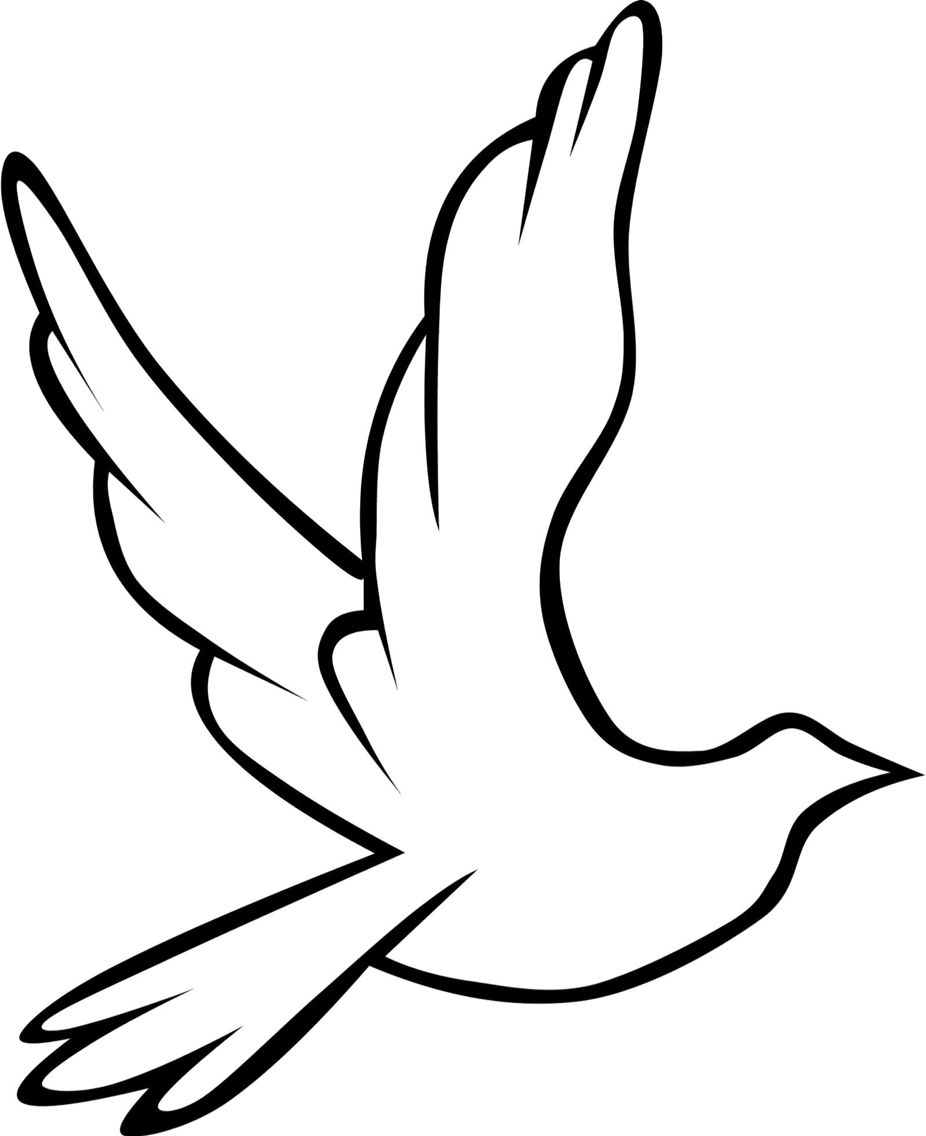 Dove outline   Clip art, and more   Bird drawings, Dove images, Bird