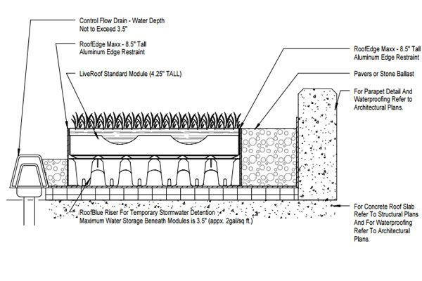 Green Roof And Blue Roof System With Control Flow Drain System Detail Landscape Architecture Section Detailed Drawings Architectural Section