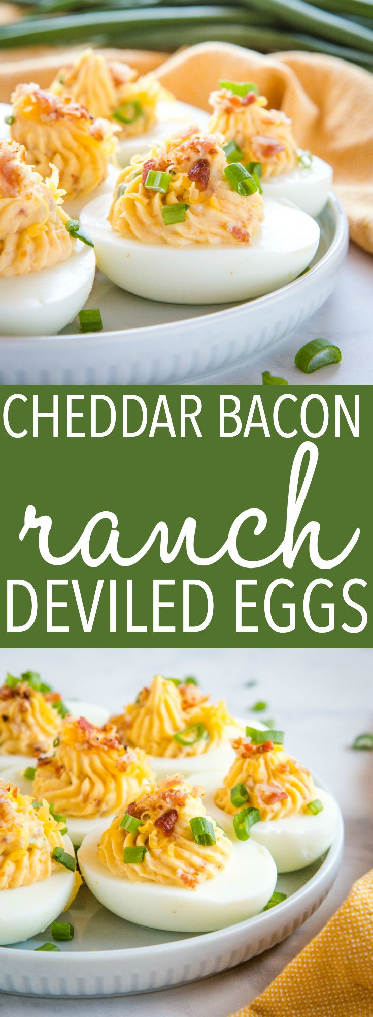 Best Ever Cheddar Bacon Ranch Deviled Eggs - The Busy Baker