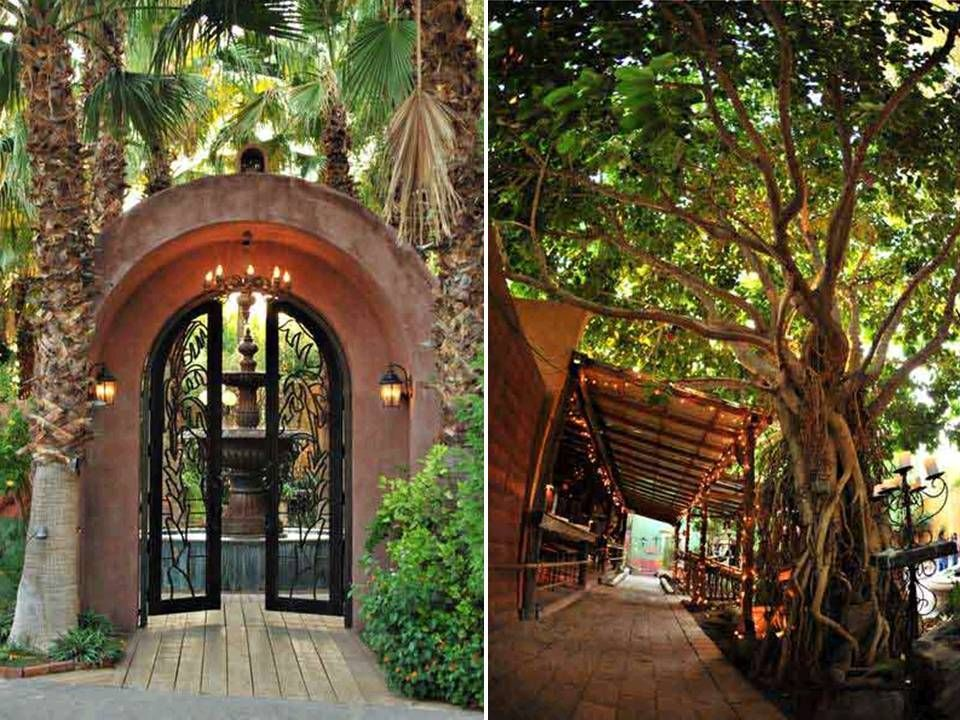 Outdoor Wedding Venues California Boojum Tree Garden Full