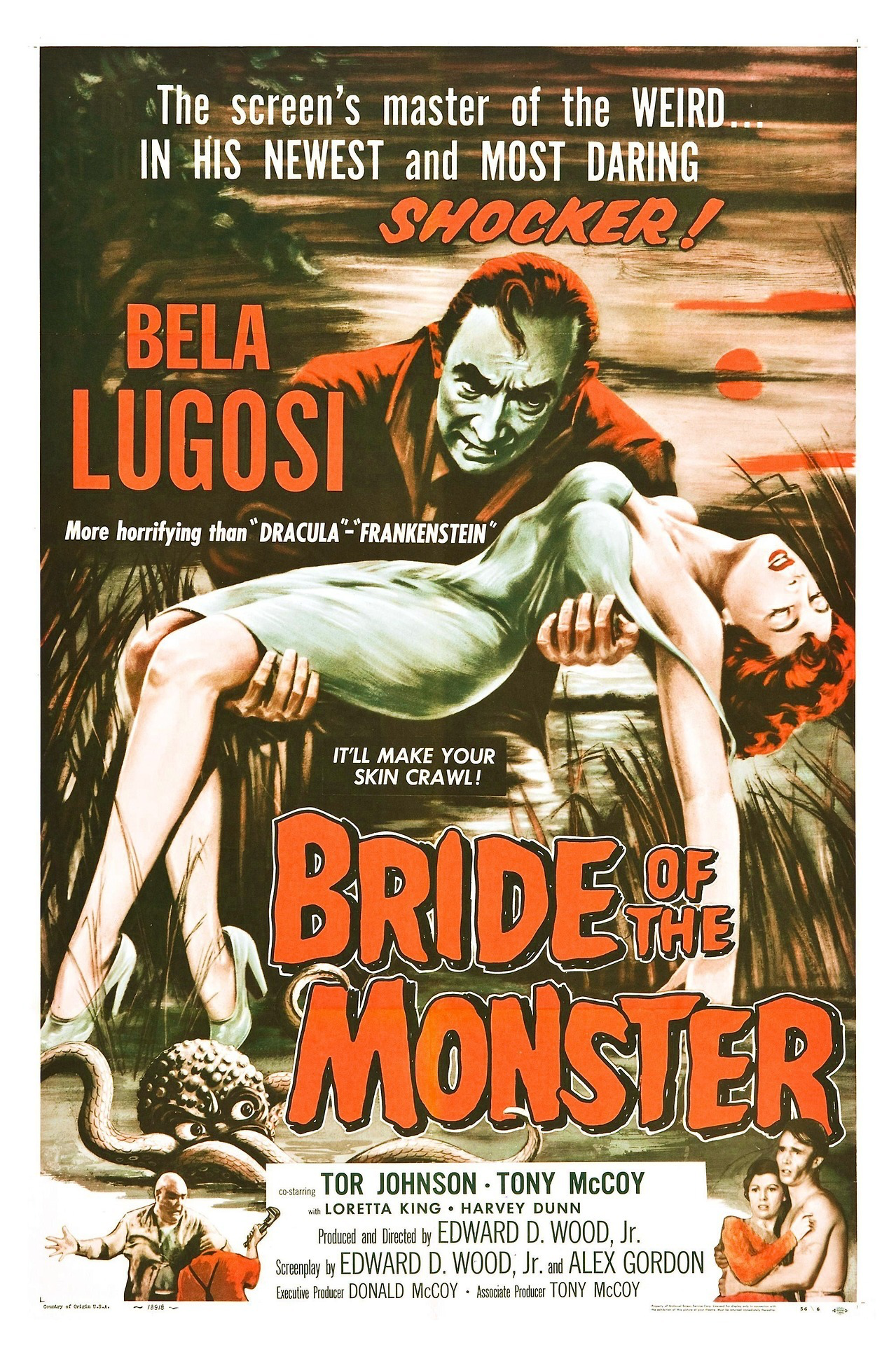 Pin by Jeanne Loves Horror💀🔪 on B Movies/Classic Movie Art ...