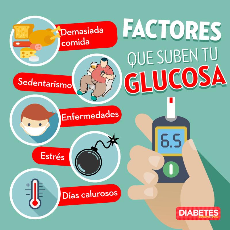Anatomia de la diabetes