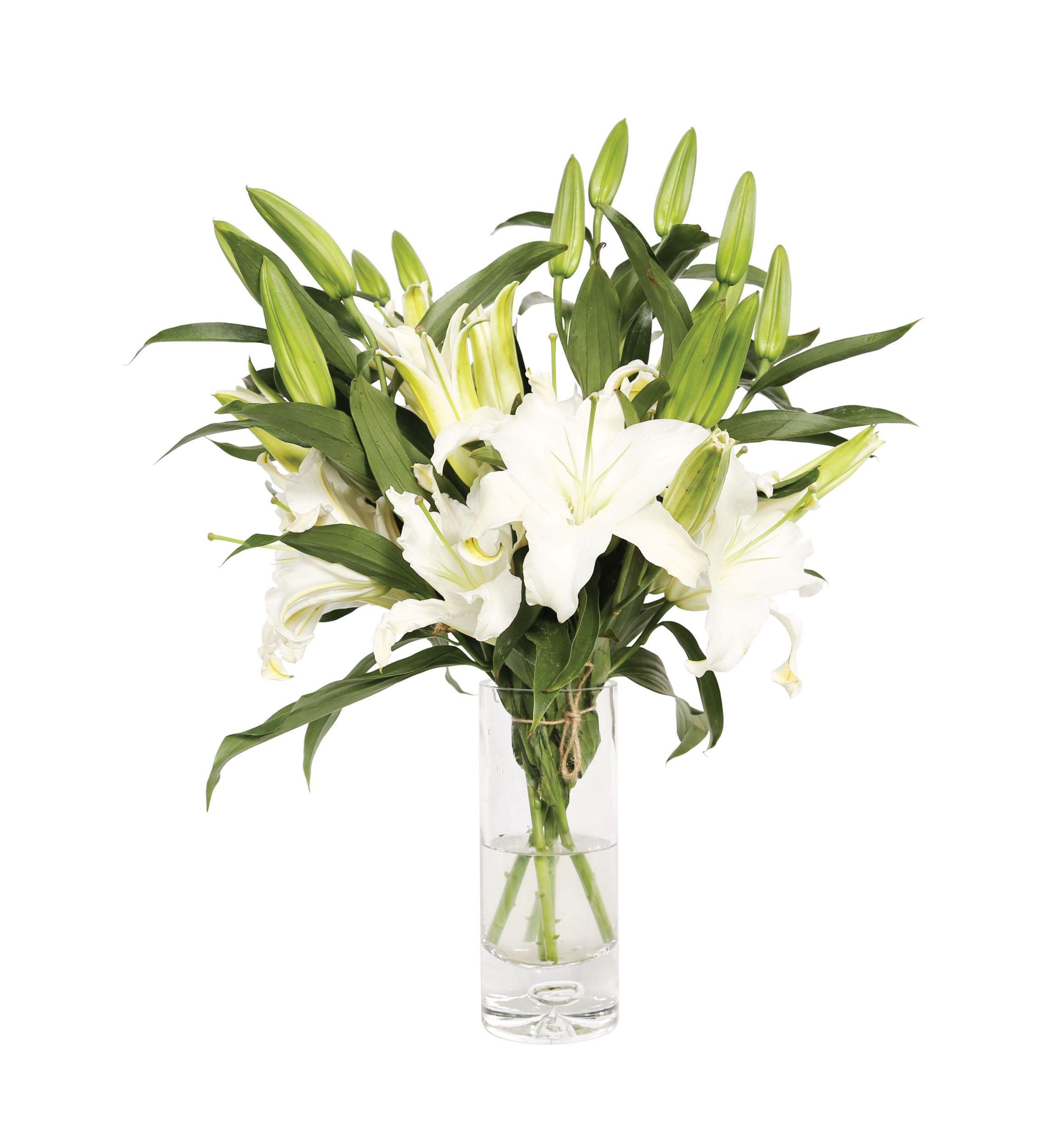 Lilies In Vase Flower Lily Vase Flower Arrangements Vase Flowers