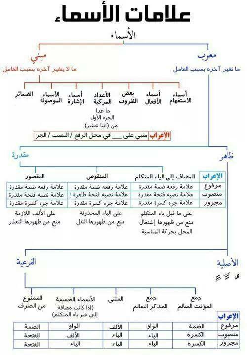 Da8d747c4594127e77bdbcbffc9c2435 Jpg 500 720 Learn Arabic Language Arabic Language Learn Arabic Online