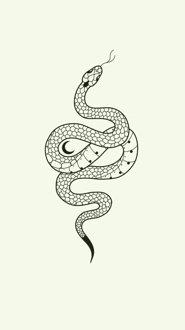 Pin By Yuseli Abigail Dominguez On Sketch Tattoos Snake Tattoo Design Serpent Tattoo