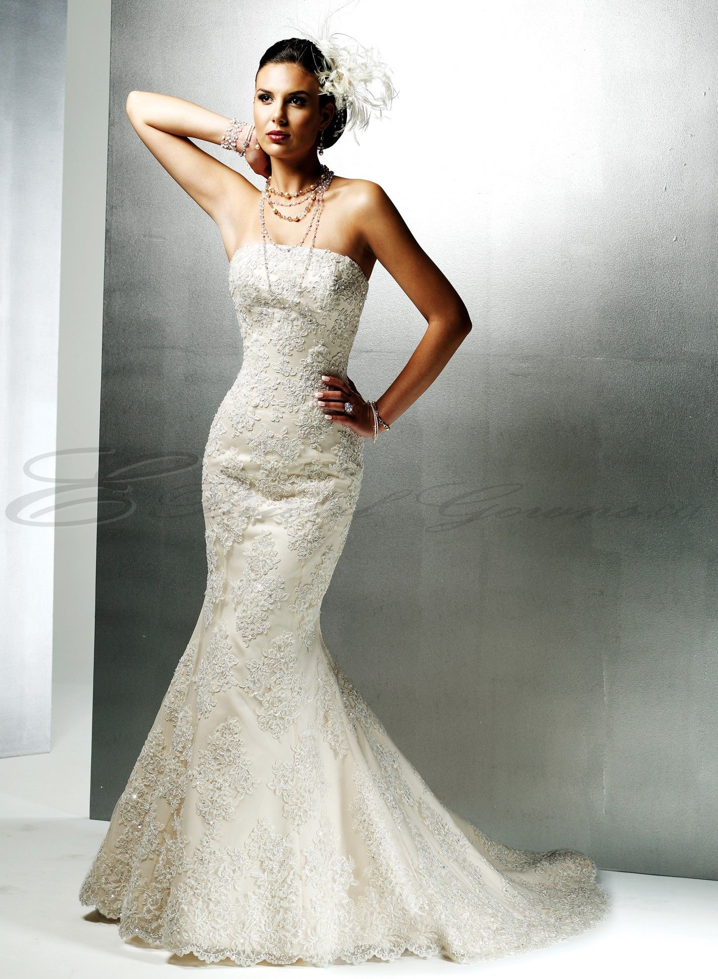 Lace And Satin Mermaid Strapless Neckline Fit and Flare