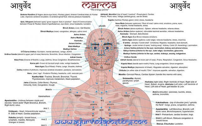 Ayurveda Posters | Ascension,Auras,Psyhic,Colors ...