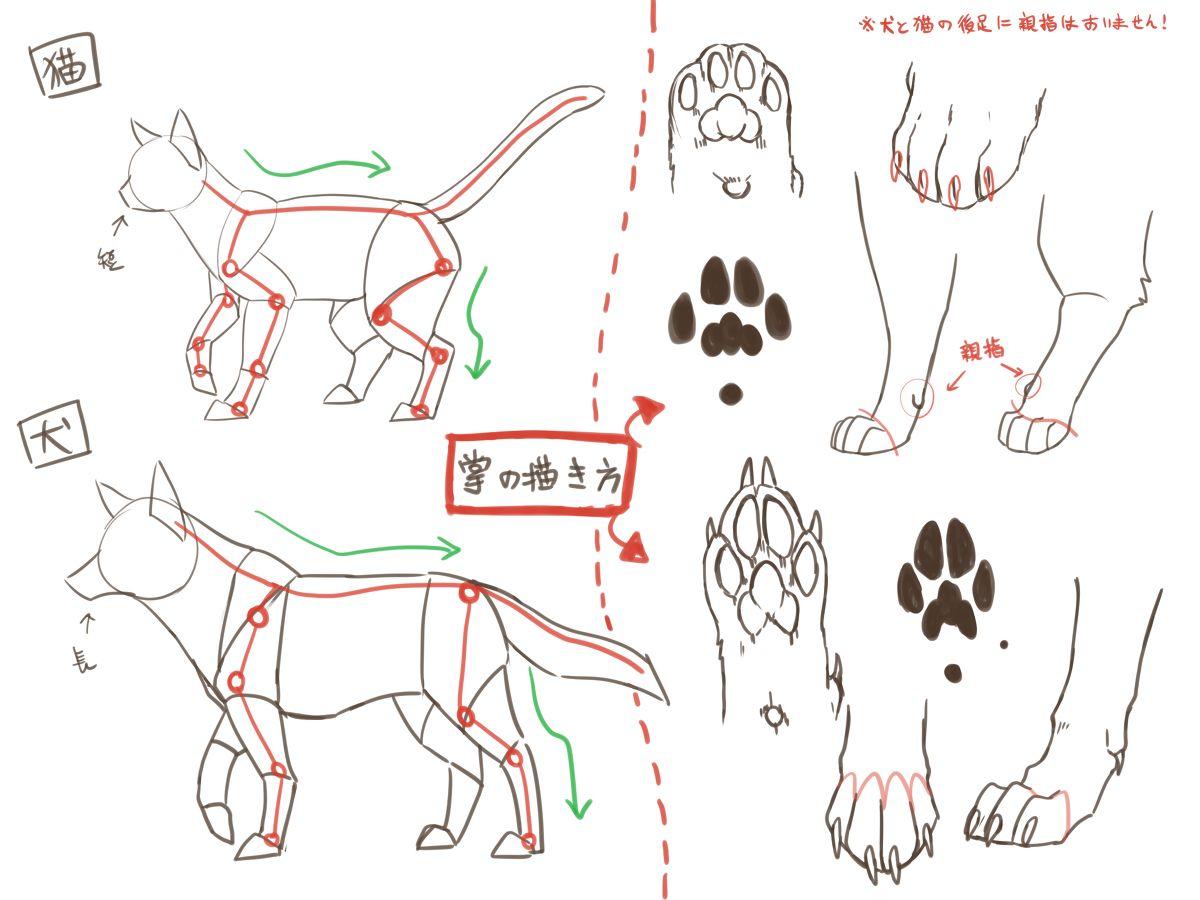 2018 年の「【自己流】犬と猫の描き方 [1] | how to」 | pinterest