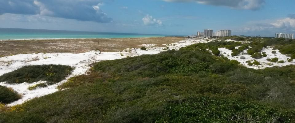 Henderson Beach State Park In Florida Is Supposed To Be The Most Pristine Private Place There