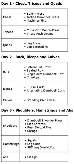 Better Pic Of 3 Day Split Add It In With Everyday Cardio And Yoga Between The Weight Days
