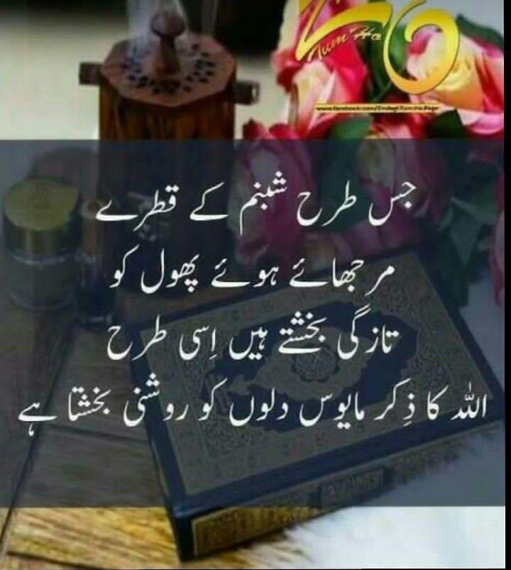 Urdu Quotes Wise Pics Islamic Qoutes Poetry Inspire Allah Quran