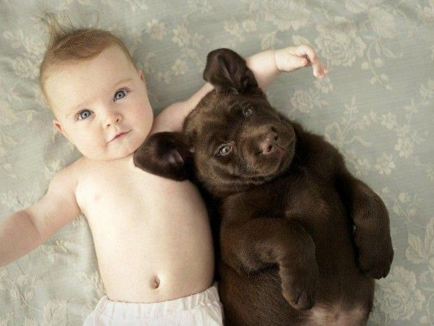 33 Cute Pictures Of Puppies And Babies Being Super Cute Baby