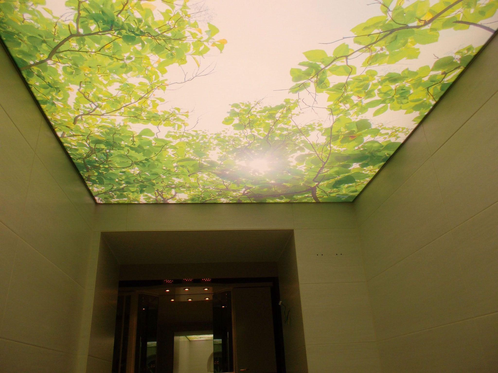 Gewebe Spanndecke Lichtdecke Mit Druck Von Planung Montage Von Meyer Spanndecken Beschichtungstechnik Spanndecken Badezimmer Ohne Fenster Beleuchtung Decke