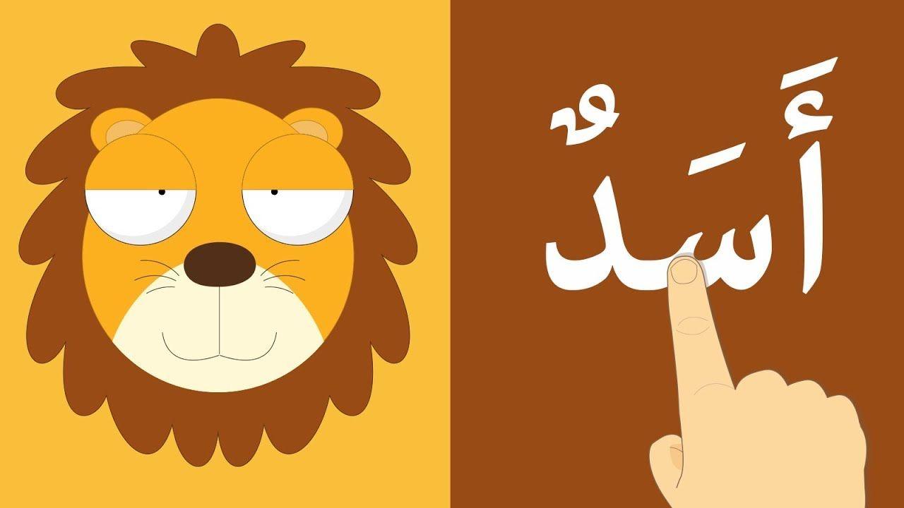تعل م قراءة أسماء الحيوانات بالحركات الفتحة الضمة الكسرة والسكون تع Animals For Kids Cartoon Kids Learning Arabic