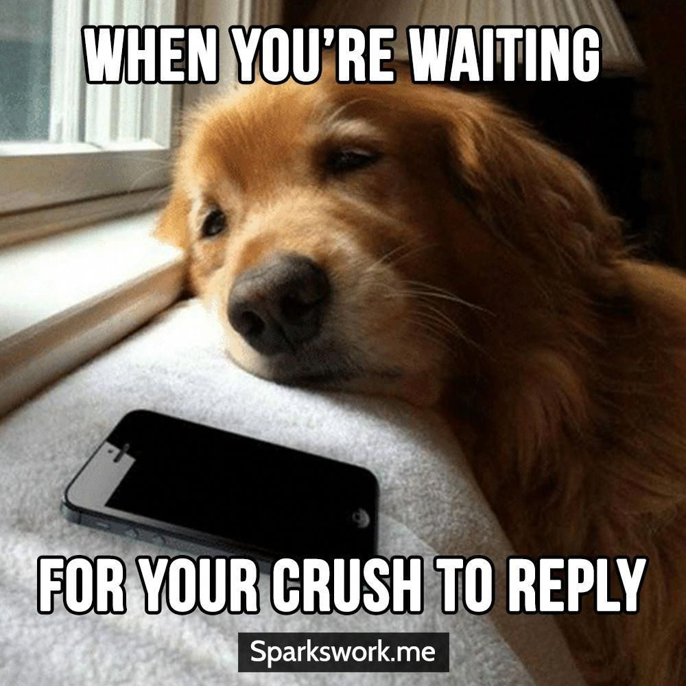 Never Like The Feeling Of Waiting Love Quotes Love Memes Love Romance Funny Love Memes Fun Love Memes Funny Funny Romance Most Beautiful Love Quotes