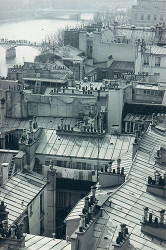 Paris Rooftops From La Samaritaine Avec Images Vieux Paris