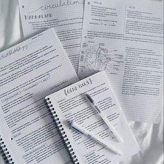 top university dissertation methodology advice