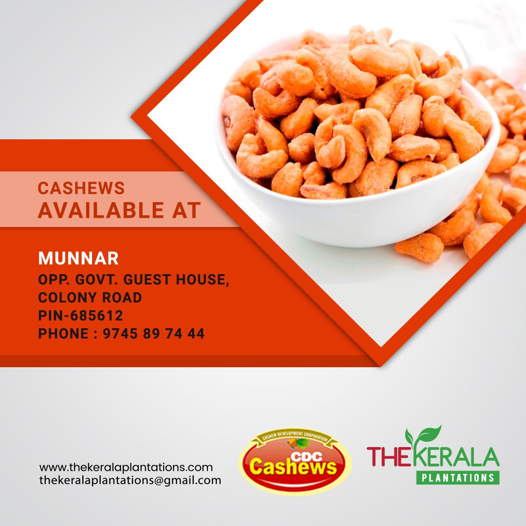 Tasty And Healthy Cdc Cashew Now Available At Munnar Opp Govt Guest House Colony Road Pin 685612 Phone 9745897444 M Food Dog Food Recipes Food Animals