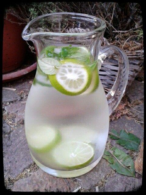 Minzwasser ! Stilles Mineralwasser, Pfefferminzblätter, Limettenscheiben und Eis. So einfach und lecker ☆