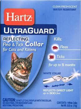Hartz Advanced Care 2 In 1 Flea And Tick Collar For Cats And Kittens Pack Of 6 Find Out More Details By Clicking The Image Cat Pr Cat Fleas Cat Collars Fleas