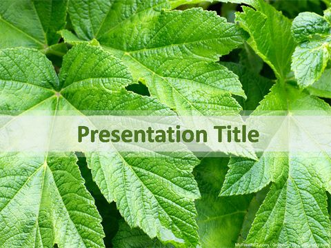 Free Green Leaves PowerPoint Template PPT Template Templates