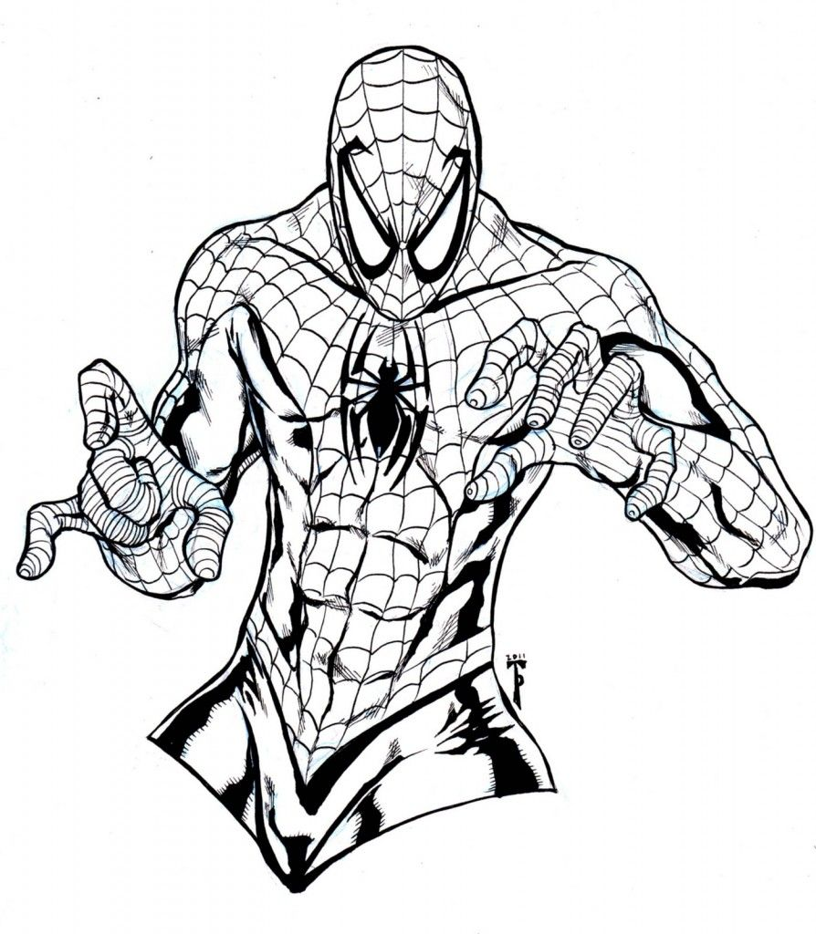 Free Printable Spiderman Coloring Pages For Kids Spiderman