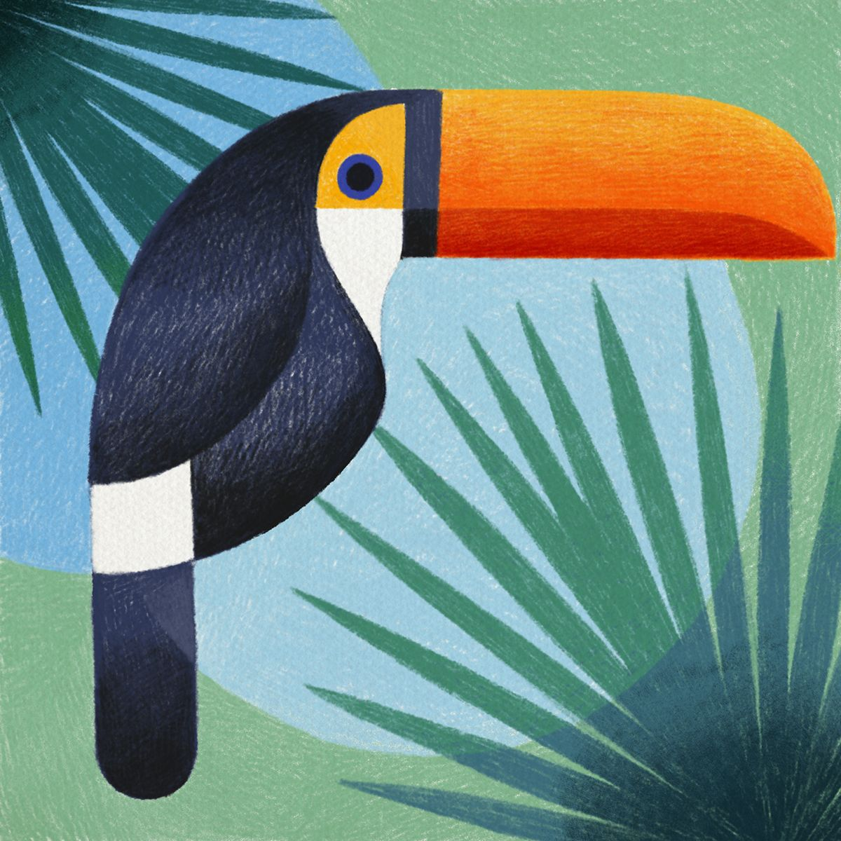 Geometric birds by Samy Halim