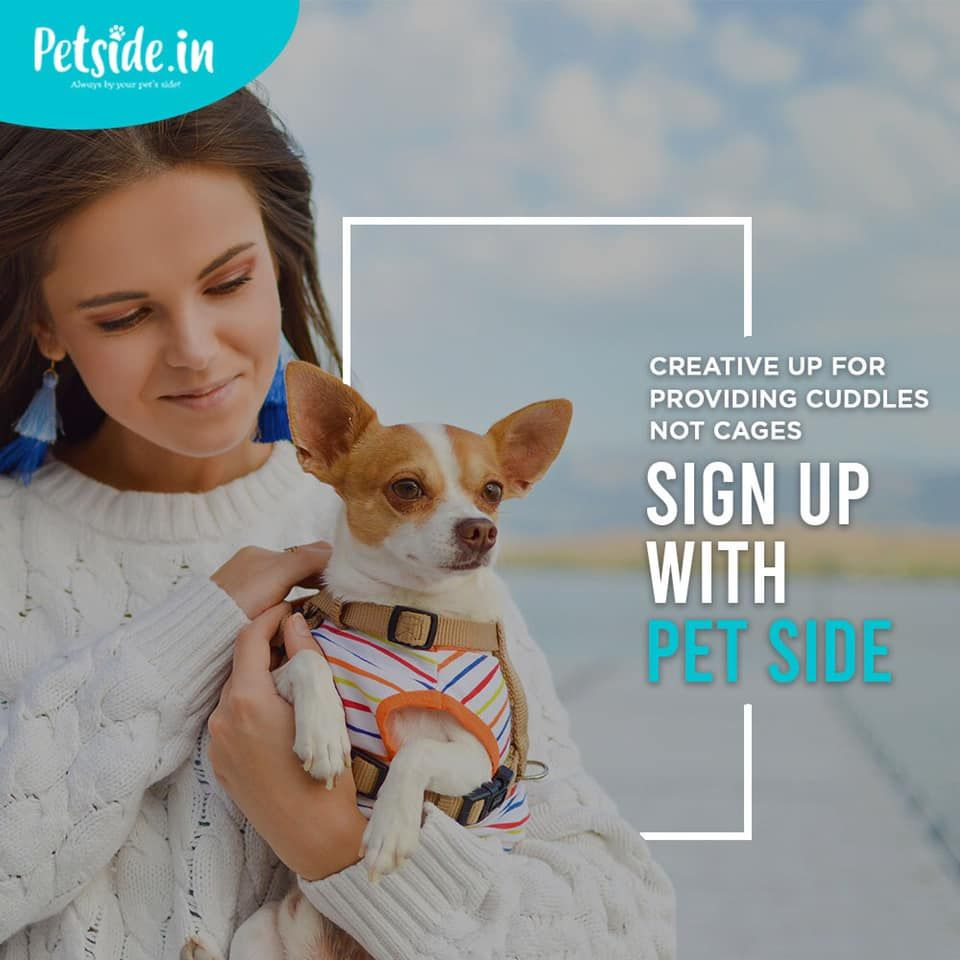 Flexible Work From Home Job For Pet Lovers Be A Pet Boarder With Petside And Accept Requests From Pet Owners At Your Own Comfo Service Animal Pets Pet Owners