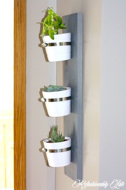Hanging Succulent Planter The Home Depot Gift Challenge Hanging Succulents Succulents Diy Planters